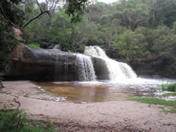 Irrawong Waterfall - Mullet Creek