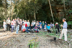 Mullet Creek Project Launch