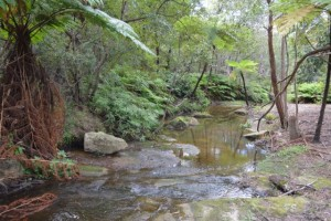 North Mullet Creek